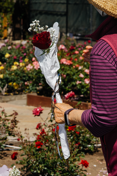Throughout the course of the event, volunteers offered rose bundles and chocolate to mothers in attendance in honor of Mothers' Day. Young Song receives a bouquet during her visit to the rose garden with her daughter Sarah.