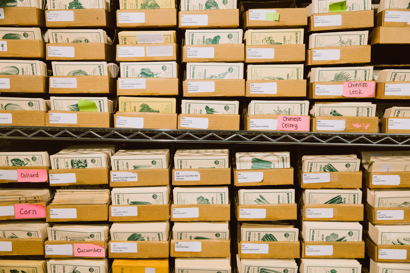 Packages of Kitazawa seeds at the Jack London Square warehouse. Credit: Andria Lo