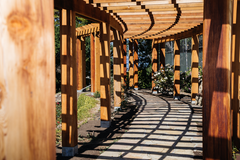 Despite being demolished in 2016, the 220ft long redwood pergola was reconstructed to the exact measurements of the original structure. The redwood beams were tagged, logged, organized, and stockpiled to be reused in the rebuild in different areas of the park.